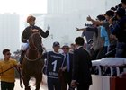 Hong Kong Champion Able Friend Retired