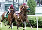Pleuven Looks for Repeat in Wise Dan