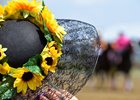 Preakness Ratings Down, but Best of May 20 Sports