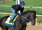 Untrapped Aims for First Stakes win in Ohio Derby