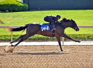 Heat Is On at Fasig-Tipton Under Tack Show