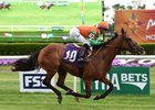 Rubilinda Impresses as Frankel's First US Winner