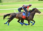 Miss Temple City Set for Royal Ascot Venture