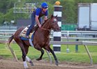 Sale Buy-Back Multiplier Now a Belmont Contender