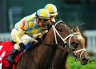 La Coronel Prepares for Royal Ascot Run