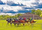 Laurel Stakes Schedule Features $1.6 Million in Purses