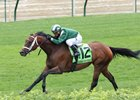 Green Mask Looms Large in Highlander at Woodbine