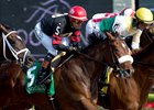 Holy Helena Favored for Queen's Plate