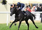 Undefeated Caravaggio Headlines July Cup at Newmarket
