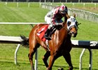 Indian Evening's First Winner Goes Gate-to-Wire