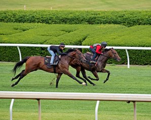 Ward Contingent Set for Royal Ascot Invasion