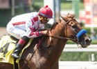 Collected Dominant Again in Precisionist Stakes