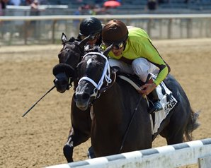 Pure Silver Goes Gate-to-Wire in Lynbrook