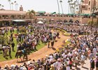 Del Mar Addressing Safety, Field Size Concerns