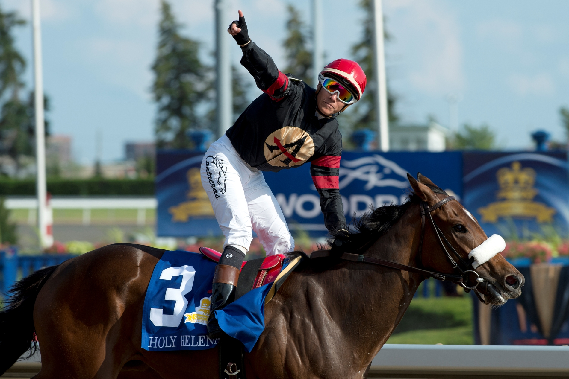 Holy Helena Sails Clear in Queen's Plate