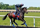 Miss Temple City Back to Work After Ascot Run