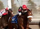 Queen's Plate Winner Holy Helena Aiming for Alabama