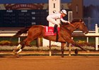 Overture Plays the Field in Indiana Oaks