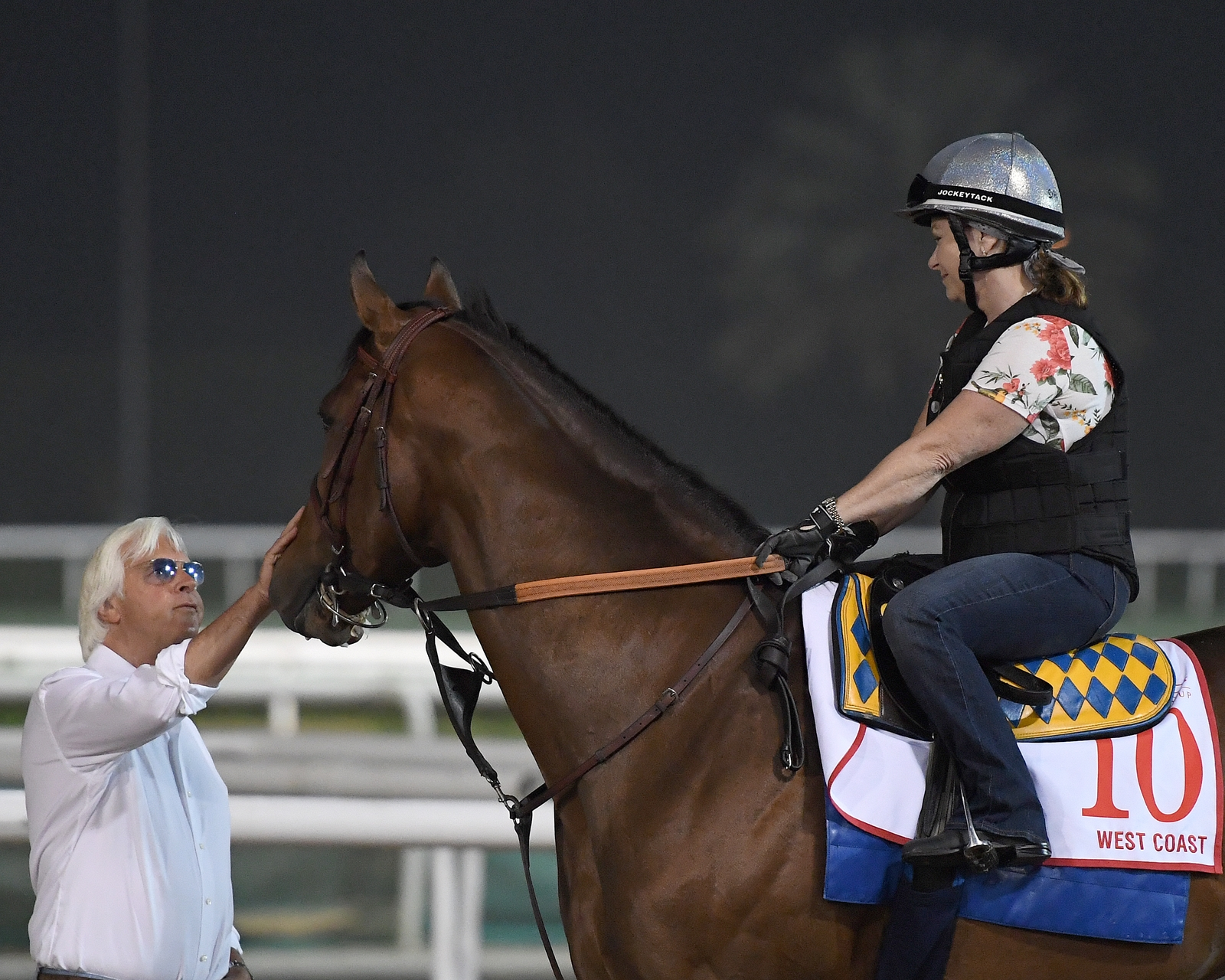 Thunder Snow Upsets Dubai World Cup in Record Time