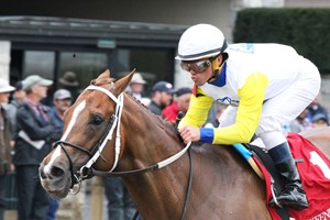 Page Mckenney Does It Again At Laurel Park Bloodhorse