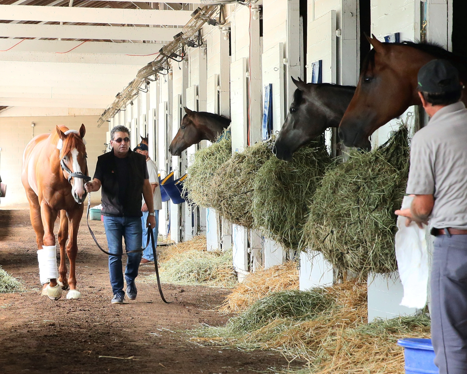 Belmont Stakes controversy: Did alliance ensure a Justify victory?