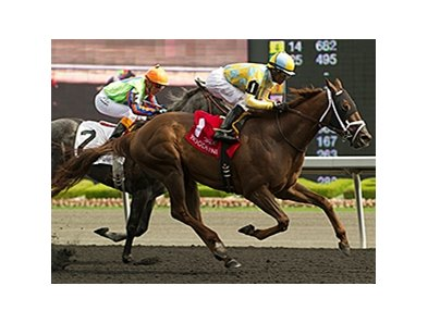 Sky Captain goes by Frac Daddy to win the Dominion Day Stakes at Woodbine.