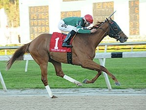 Tampa Bay Derby winner Ring Weekend will make his final prep for the Kentucky Derby in the Calder Derby.