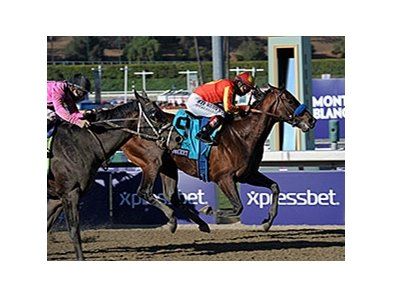 "Secret Circle makes his first start of the year in the Palos Verdes Stakes at Santa Anita Park.<br><a target=""blank"" href=""http://photos.bloodhorse.com/BreedersCup/2013-Breeders-Cup/Sprint/33149951_TtjBB8#!i=2899910022&k=cbdjMXr"">Order This Photo</a>"