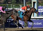 Secret Circle won the 2013 Breeders' Cup Sprint.