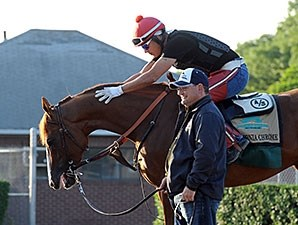 California Chrome is part of the 2011 Foal crop, which numbers 25,500.