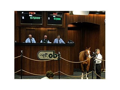 Hip 763, Suroof, a 7-year-old Empire Maker sold for $57,000 to top the third and final session.