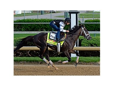 Intense Holiday
