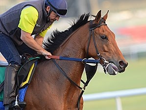 Twilight Eclipse at Meydan on Thursday