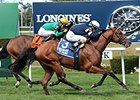 Lubash wins the Ashley T Cole Stakes.