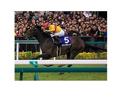 Copano Richard Sprints to Victory in Japan's Takamatsunomiya Kinen.