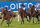 "Pre-race favorite Taghrooda has 19 rivals to beat in the Prix de l'Arc de Triomphe.<br><a target=""blank"" href=""http://photos.bloodhorse.com/AtTheRaces-1/At-the-Races-2014/i-qLCSG6L"">Order This Photo</a>"