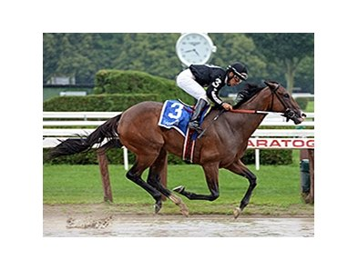 R Free Roll wins the Honorable Miss Handicap.