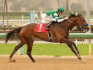 Iotapa flies home to win the Santa Maria Stakes.
