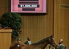 Filly, Two Colts Each Bring More than $1M