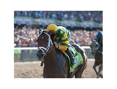 "Palace Malice<br><a target=""blank"" href=""http://photos.bloodhorse.com/TripleCrown/2013-Triple-Crown/Belmont-Stakes-145/29744699_jpqpwR#!i=2563009344&k=3BNBp2X"">Order This Photo</a>"