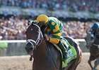 "Palace Malice <br><a target=""blank"" href=""http://photos.bloodhorse.com/TripleCrown/2013-Triple-Crown/Belmont-Stakes-145/29744699_jpqpwR#!i=2563009344&k=3BNBp2X"">Order This Photo</a>"