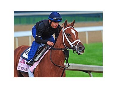 "My Miss Sophia is named for the Mathises' 11-year-old daughter, Sophia.<br><a target=""blank"" href=""http://photos.bloodhorse.com/TripleCrown/2014-Triple-Crown/Kentucky-Derby-Workouts/i-fx36kWQ"">Order This Photo</a>"
