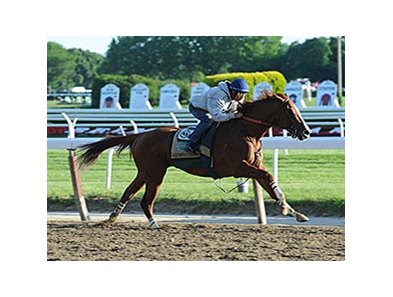 "California Chrome worked a half-mile in :47.69 at Belmont Park.<br><a target=""blank"" href=""http://photos.bloodhorse.com/TripleCrown/2014-Triple-Crown/Belmont-Stakes-146/i-LwnrJsk"">Order This Photo</a>"