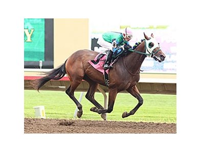 Hold For More wins the Northern Lights Futurity.