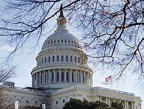 Veterinary Medicine Mobility Act Becomes Law
