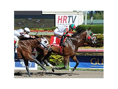 Ribo Bobo wins the Caixa Eletronica Stakes.