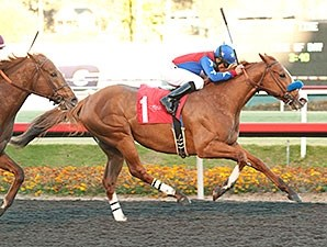 Blueskiesnrainbows was a gate-to-wire winner of the Native Diver Dec. 14.