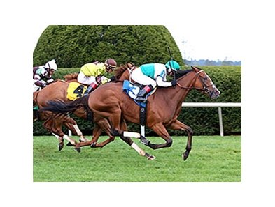 Holiday Star won the Sycamore Stakes Oct. 15 at Keeneland.
