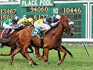 Main Sequence Scores in United Nations Stakes