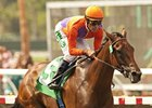 Beholder takes on seven, including Joyful Victory, in the Zenyatta Stakes.